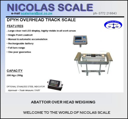 Overhead Track Scale